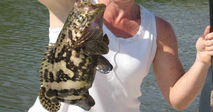 South Florida Backwater Fishing Trips