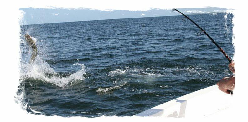 Sport Fishing In Florida