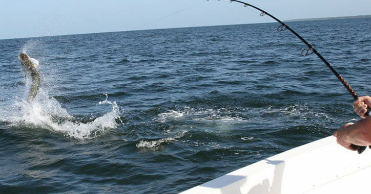 South Florida Sportfishing Trips